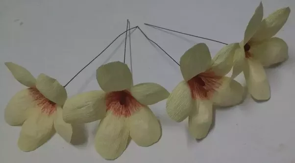 How to make paper flowers quora pink and white crepe paper flowers sharing our experiences mightylinksfo