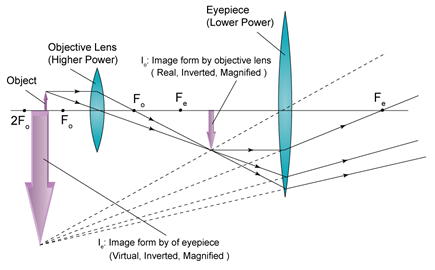 What would be a better explanation of focal length instead of the typical textbook diagram of a compound microscope lens as usual what you learned is school is so over simplified that it completely misleads you ccuart Image collections