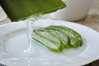 Is it safe to apply aloe vera gel on the face overnight? - Quora
