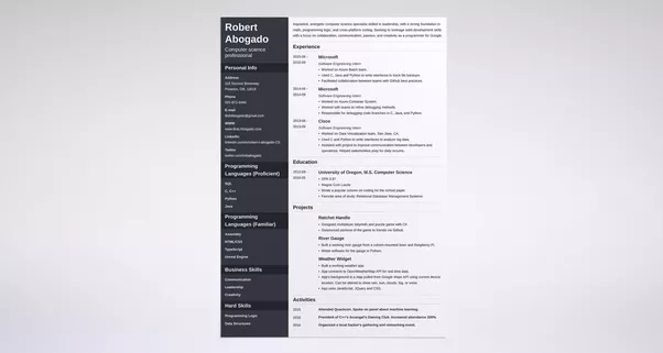 what are some examples of great programmer resumes