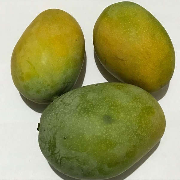 Where are the best tasting mangos in the world from? - Quora