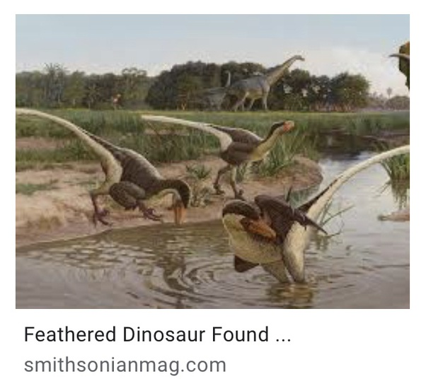 Are There Any Dinosaurs Living Now Quora