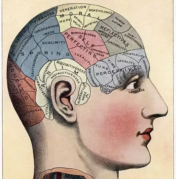 How are memories stored and retrieved in the human brain quora the newtonian view of physics continue to perform well when things are not too small or too large the situation with the brain and the mind face a similar ccuart Gallery