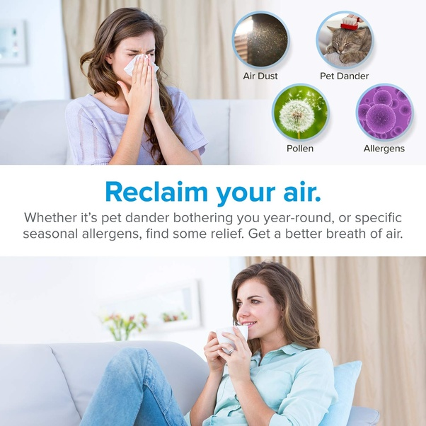 What is the best air purifier for the home that can