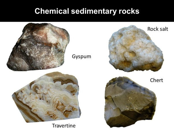 What Are The Differences Between Clastic Organic And Chemical