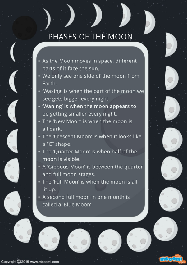 How many moon phases are there quora as the moon moves in spaces different parts of it face the sun sciox Image collections