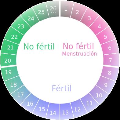 Durante el ciclo menstrual, ¿cuándo puede quedarse embarazada la ...