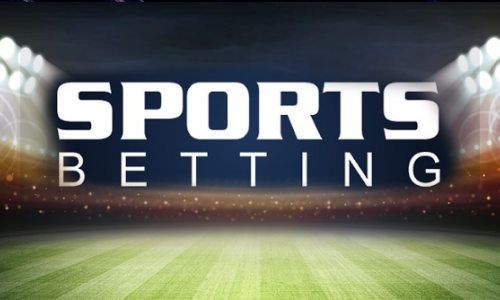 Starting a sports betting company online super bowl betting nfl games