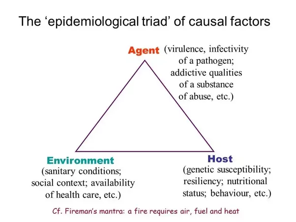 epidemiological triangle model of alcoholism 1the nurse working in the community is aware that there are different models for studying the epidemiology of a health condition in a population one model of investigation of the interrelationships and characteristics of disease is the epidemiologic triangle.