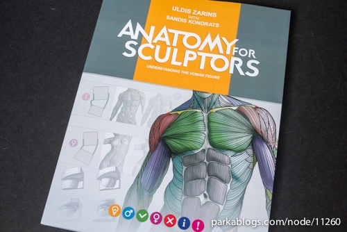 how to draw anatomy book