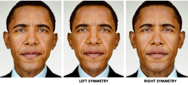 Why are human faces not symmetrical? - Quora