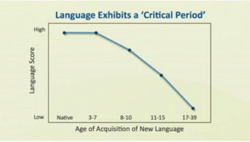 What do you think the ideal age for learning a foreign language quora there are plenty of researches about the ideal age for learning a language the graph above shows the optimal age to learn a new language due to brain ccuart Choice Image