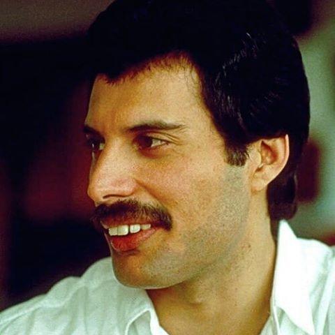 Why Did Freddie Mercury Have Big Teeth Quora