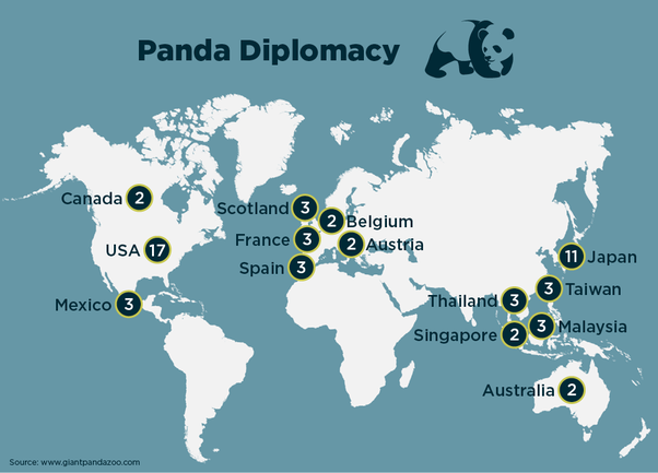 Why does china own all of the pandas quora apparently we have been quite generous in the distribution of pandas around the world so no we do not own all the pandas around the world gumiabroncs Choice Image