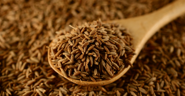 What are the side effects of cumin seeds? - Quora