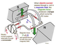 Placing A Coil Of Wire Inside Permanent Magnetic Field And Fixed So It Can Freely Rotate P Cur Through The Will To