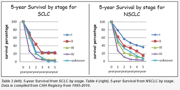 Image Result For What Are The Chances Of Surviving Stage Lung Cancer