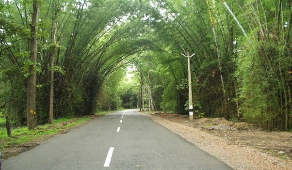 What is the best route to go to Coorg from Bangalore? - Quora