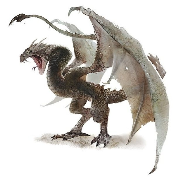 Wyvern Dragon: Why, In Game Of Thrones, Are Dragons Called Dragons, When