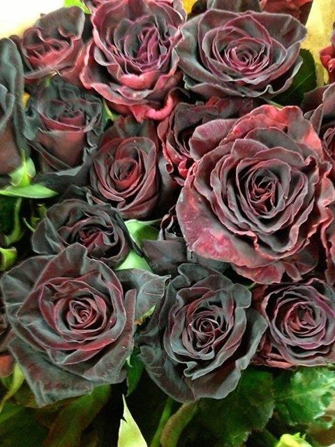 rose Turkish black