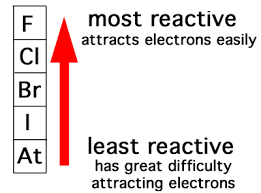 Which is the most active element in the periodic table quora caesium has the highest metallic character hence the high reactivity urtaz Images