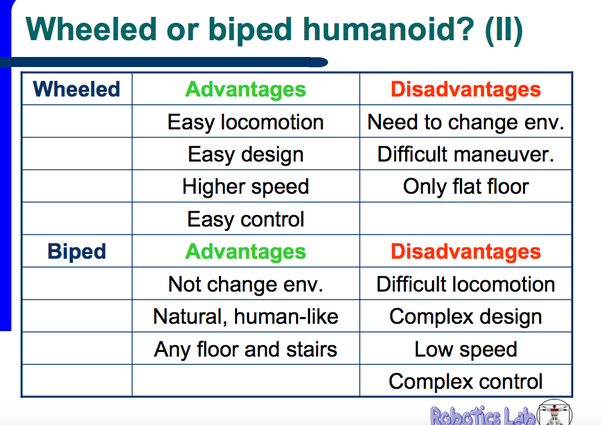what are the advantages of bipedalism