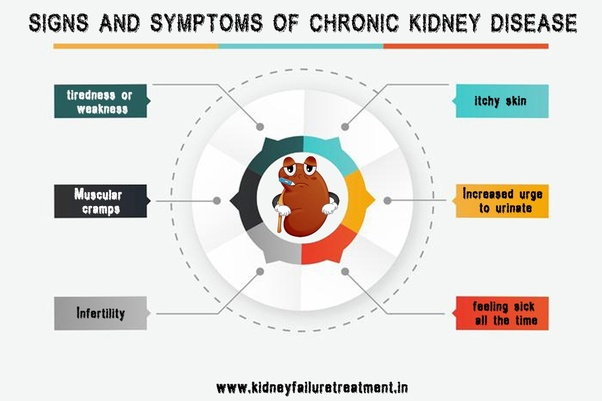 What Is The Link Between Blood Pressure And Kidney Disease Quora
