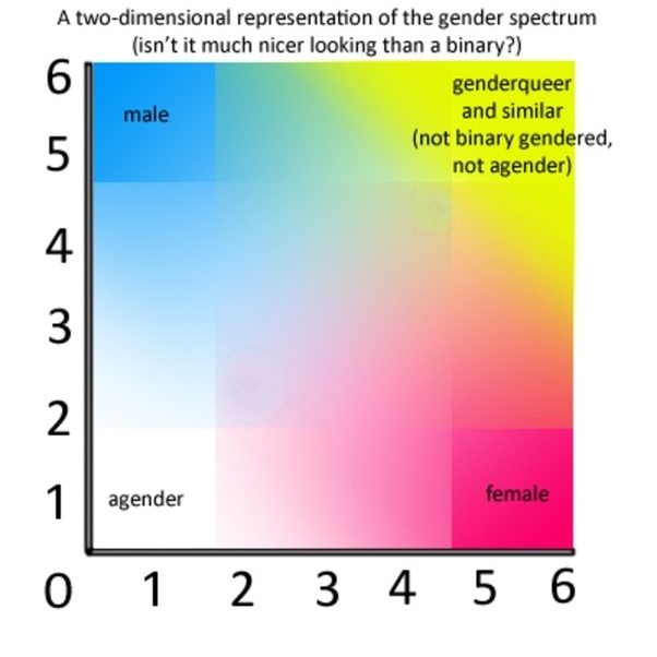 what are the different types of genders in the human race quora