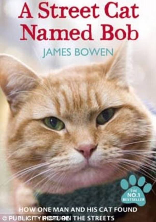 How Old Is Street Cat Named Bob