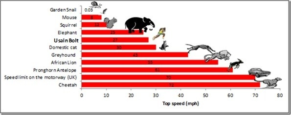 The Average Dog Can Run How Fast Mph
