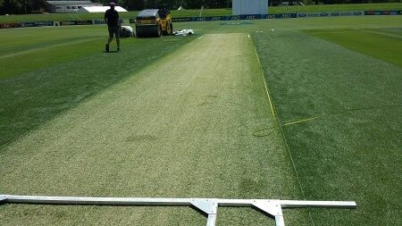 what is the role of grass on cricket pitch quora