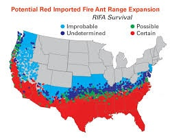 Can Fire Ants Survive A Northern Uscan Winter Quora - Map-of-fire-ants-in-us