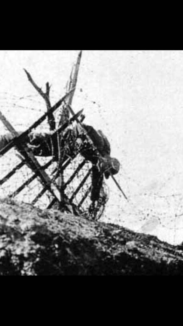 What were the uses of barbed wire in World War 1? - Quora
