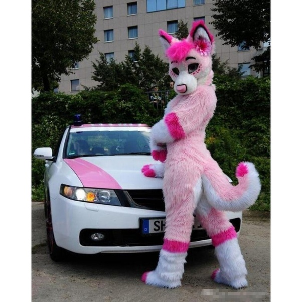What is your opinion on furries? - Quora