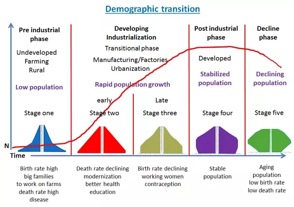 scope of demography Today's objectives • understand the objectives for the course and my expectations of me and of you • introduce population concepts and their.