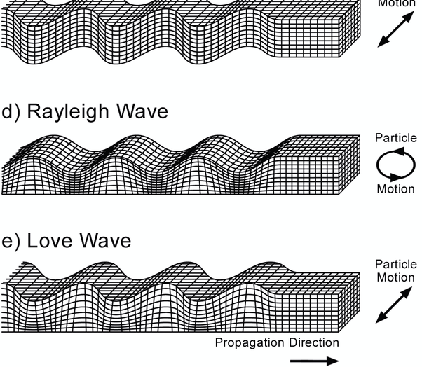 Seismic Waves That Can Travel Through Liquids And Solids Are