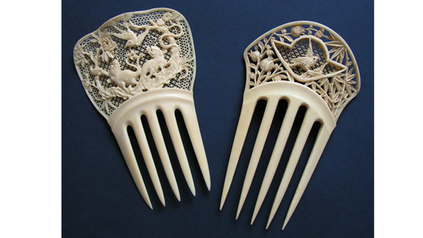 Elephant Ivory Is Used For Various Things Such As Piano Keys Billiards Balls Jewelry And Many Other Human Enjoyment