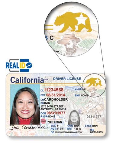real id drivers license ny