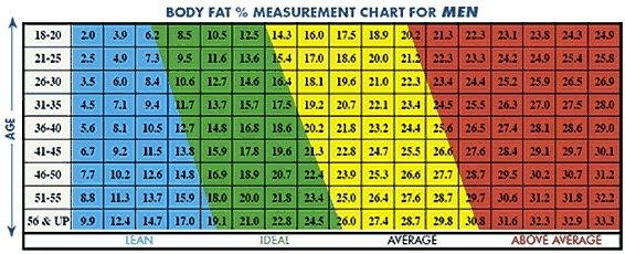 What body fat % is ideal for martial arts? - Quora