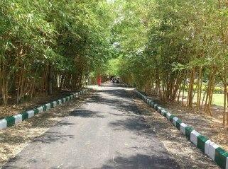 Is Amravati safe or not? - Quora