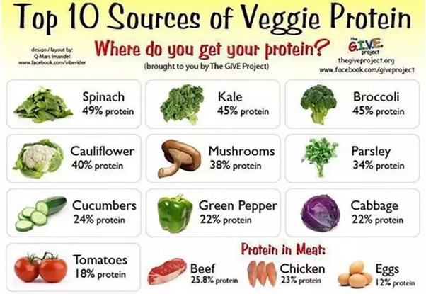 Can You Give Me A High Protein Indian Vegetarian Meal Plan That Is Under 1500 Calories Quora
