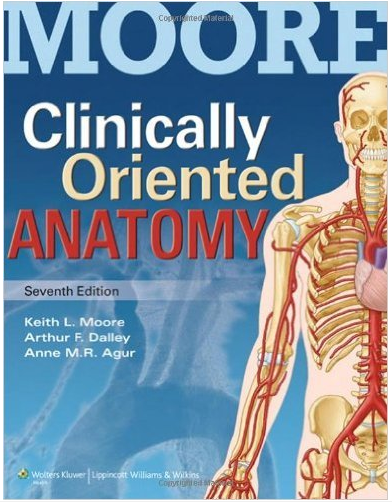 What Is A Good Book To Teach Yourself Human Anatomy Quora