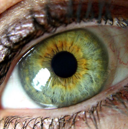 What Eye Color Do You Find Most Attractive And Why Quora