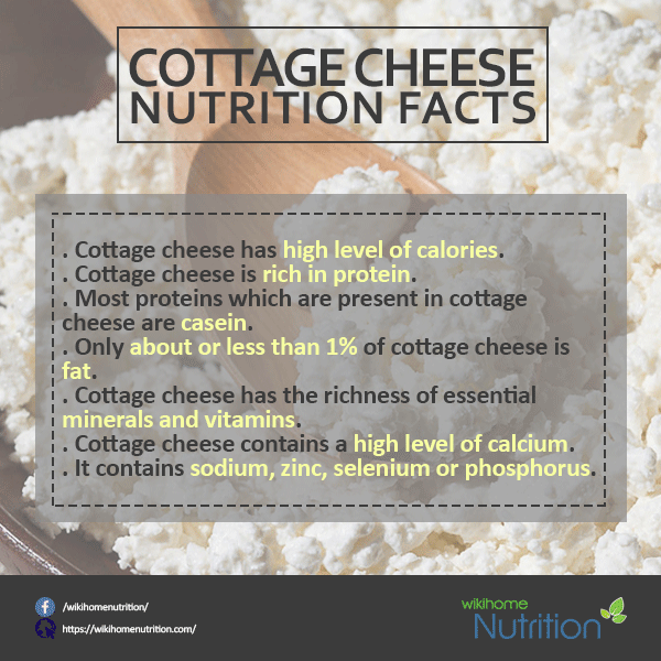 Elegant Why Is Cottage Cheese Considered A Health Food?   Quora