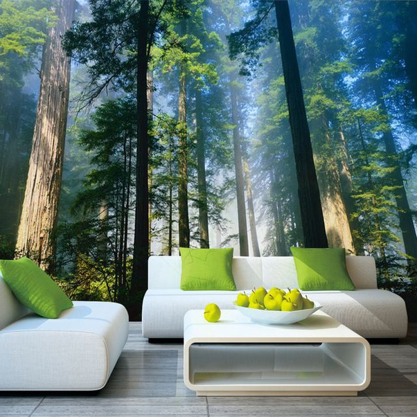 What Is The 3d Wallpaper Murals For Home Walls Quora