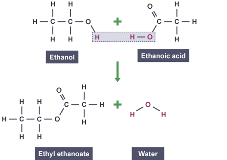 What is the smell of ethanol + ethanoic acid? - Quora