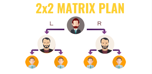 How Does MLM 2x2 and 2x3 matrix system plan work? - Quora