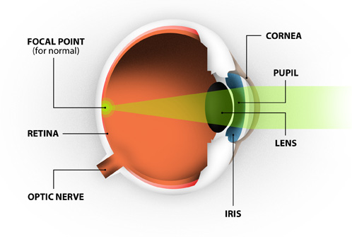 What Is The Maximum Light Intensity That A Human Eye Can Withstand
