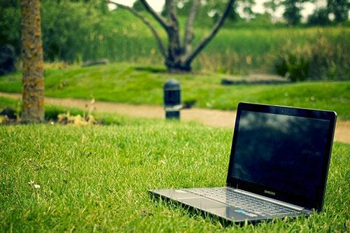 Wann Ist Der Beste Zeitpunkt Um Seinen Rasen Zu Vertikulieren Quora
