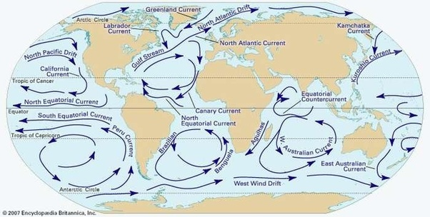 Sargasso Sea On World Map.Can The Sargasso Sea Be Found In Every Sea Quora